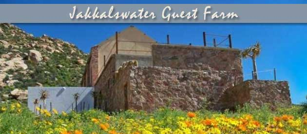 jakkalswater guest farm, self catering, accommodation, springbok wedding venue, camping site, northern cape bush breakaway